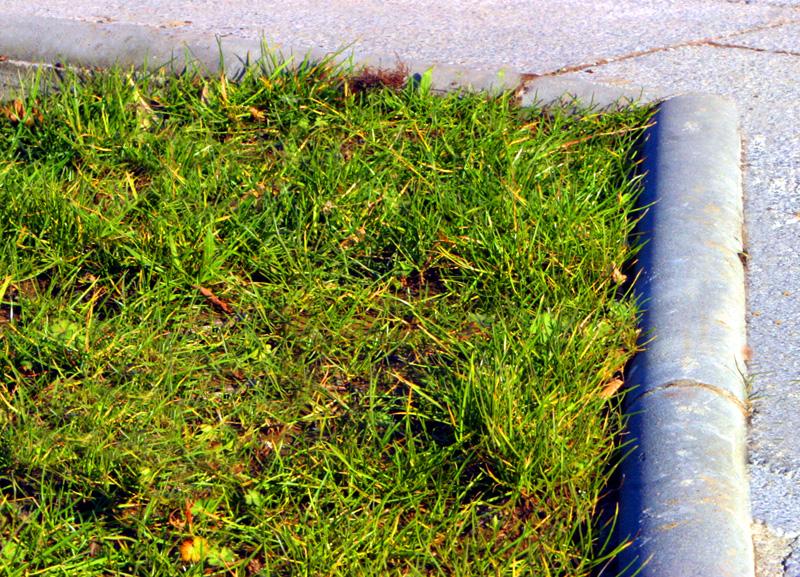 Bordillos para jardines detalle bordillo de jardn en - Borduras jardin bricomart ...